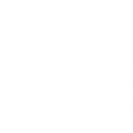 team (5)